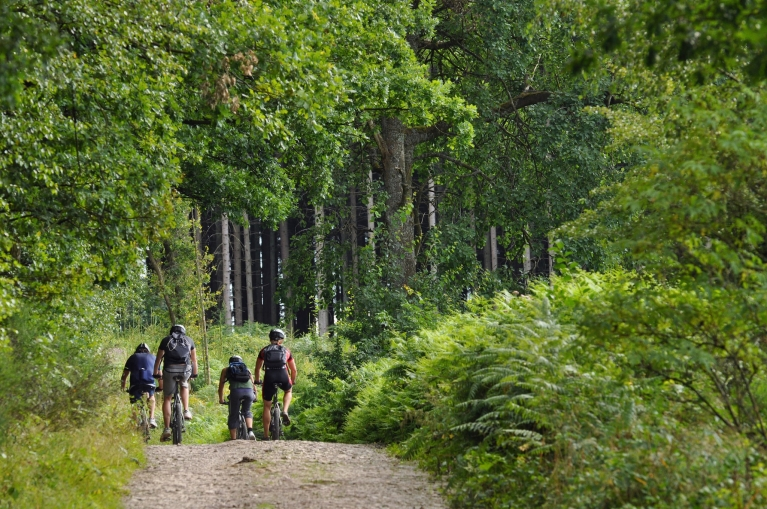 Mountainbike-Tour in den belgischen Ardennen